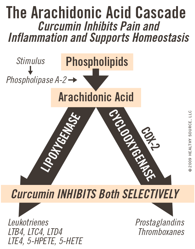 The arachidonic acid cascade: Curcumin inhibits pain and inflammation and supports homeostasis