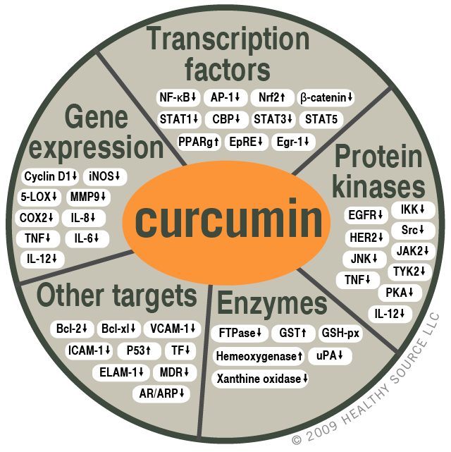 Chart of molecular targets of curcumin